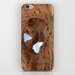 Faces of Nature iPhone Skin