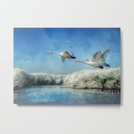 Swans over frozen lake Metal Print