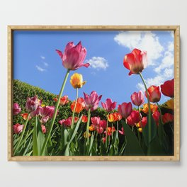 tulips in the sun Serving Tray