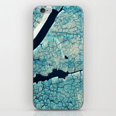 break iPhone & iPod Skin