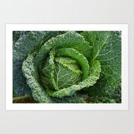 Nature's Fold Art Print