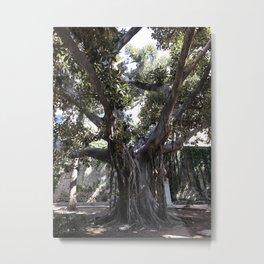 Big Fat Italian Tree Metal Print