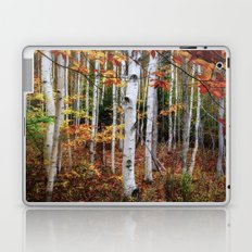Acadia Fall color Laptop & iPad Skin