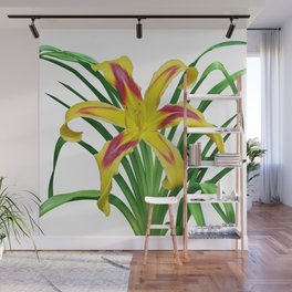 Daylily Solo - Hemerocallis 'Free Wheelin' on white Wall Mural