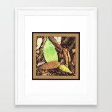S. Florida Hammock Litter Framed Art Print
