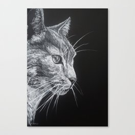 Tom cat Canvas Print
