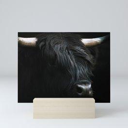 Minimalist Black Scottish Highland Cattle Portrait - Animal Photography Mini Art Print