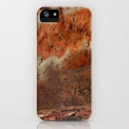 Idaho Gem Stone 9 iPhone Case