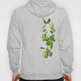 Citrus OrangeTree Branches with Flowers and Fruits Hoody