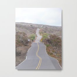 The Journey - Meditation Road Metal Print