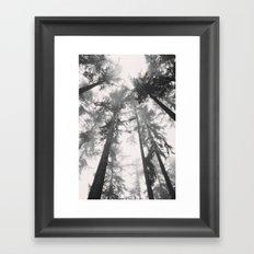 Towards The Sky Framed Art Print