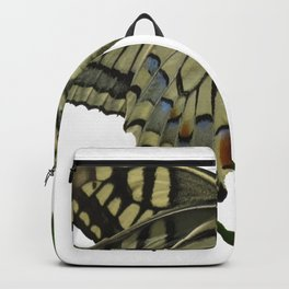Scarce Swallowtail Backpack