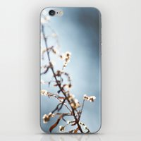 celebrity iPhone & iPod Skins featuring local celebrity by Monica Ortel ❖