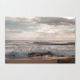 A Little Splash Canvas Print
