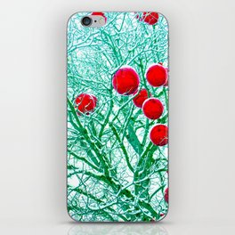 Rhythm of Winter iPhone Skin