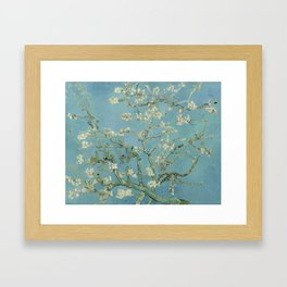 Almond Blossoms Framed Art Print
