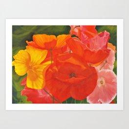 Colourful Summer Poppies Art Print