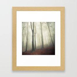 forest in fog Framed Art Print