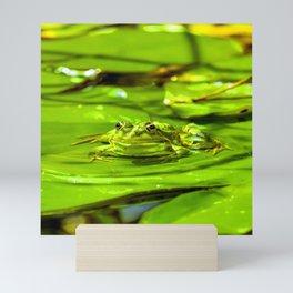Frog On A Lily Mini Art Print