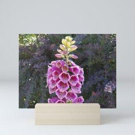 Gloves in summer!  Foxglove, Digitalis purpurea Mini Art Print