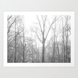 Black and White Forest Illustration Art Print