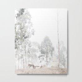 Zebras - through the mist Metal Print
