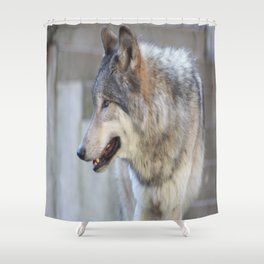 The shy one Shower Curtain