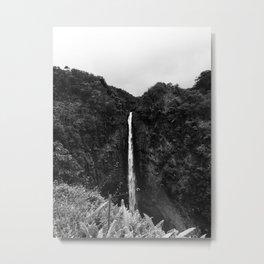 Akaka Falls, Big Island, Hawaii Metal Print