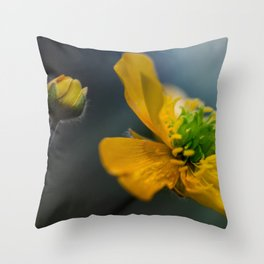 Two similar worlds Throw Pillow