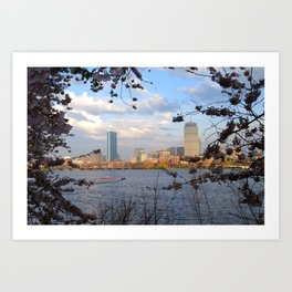Springtime on the Charles River in Boston MA Art Print