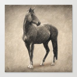 Le Cheval Canvas Print