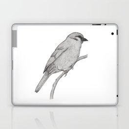 A Bird named Johan Laptop & iPad Skin