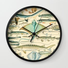 Vintage Fish Diagram // Poissons II by Adolphe Millot XL 19th Century Science Textbook Artwork Wall Clock