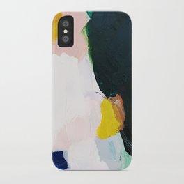 Palette No. 33 iPhone Case