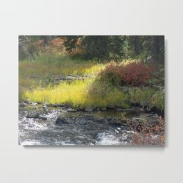 Sunlight and Shade in Landscape Metal Print