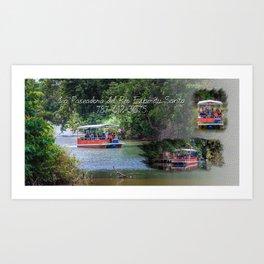 La Paseadora del Rio Espiritu Santo Art Print