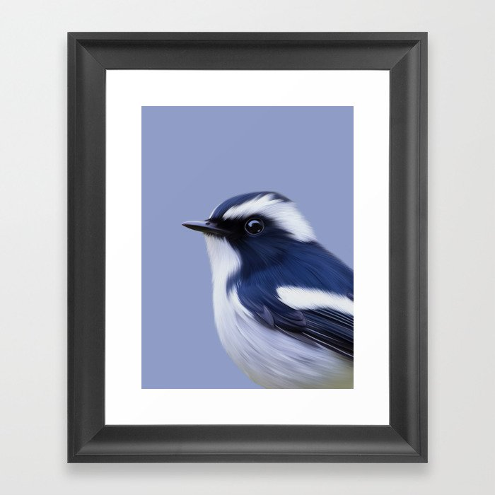 Pied Flycatcher Framed Art Print