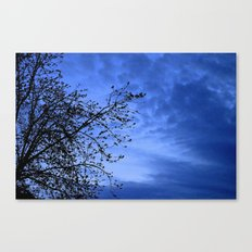 Here Comes the Night Canvas Print