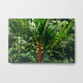 Lipstick Palm Jungle Metal Print