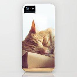 Hmm Pizza iPhone Case