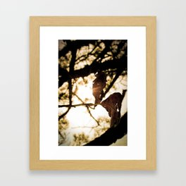 leaf art Framed Art Print