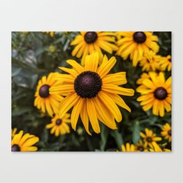 Focus on the Flowers Canvas Print