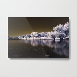 Parker Canyon Lake in Southern Arizona Metal Print