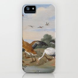 Jan van Kessel , Reiher und Enten, birds iPhone Case
