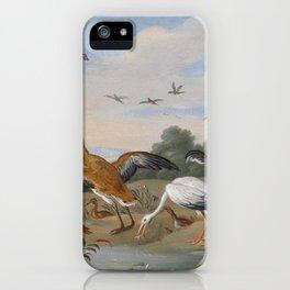 Jan van Kessel , Reiher und Enten, birds iPhone Case