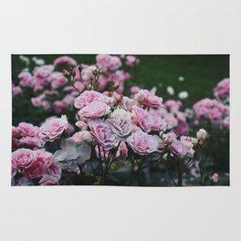 Rose Garden at Dusk Rug