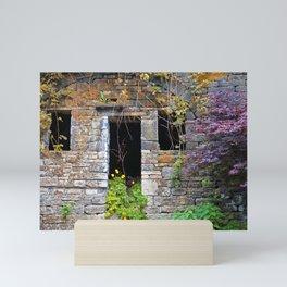 ancient house  in a wall Mini Art Print