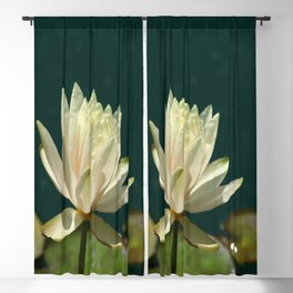 Carolina Sunset Waterlily Blackout Curtain