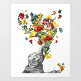 Happy Baby Elephant Art Print