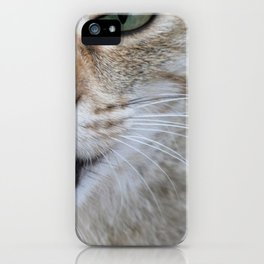 Cat In Charge iPhone Case